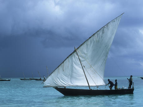 Dhow sailing boat