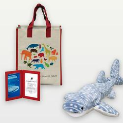 Whale_shark_08.23.12_help