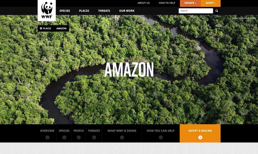 Amazon hero image