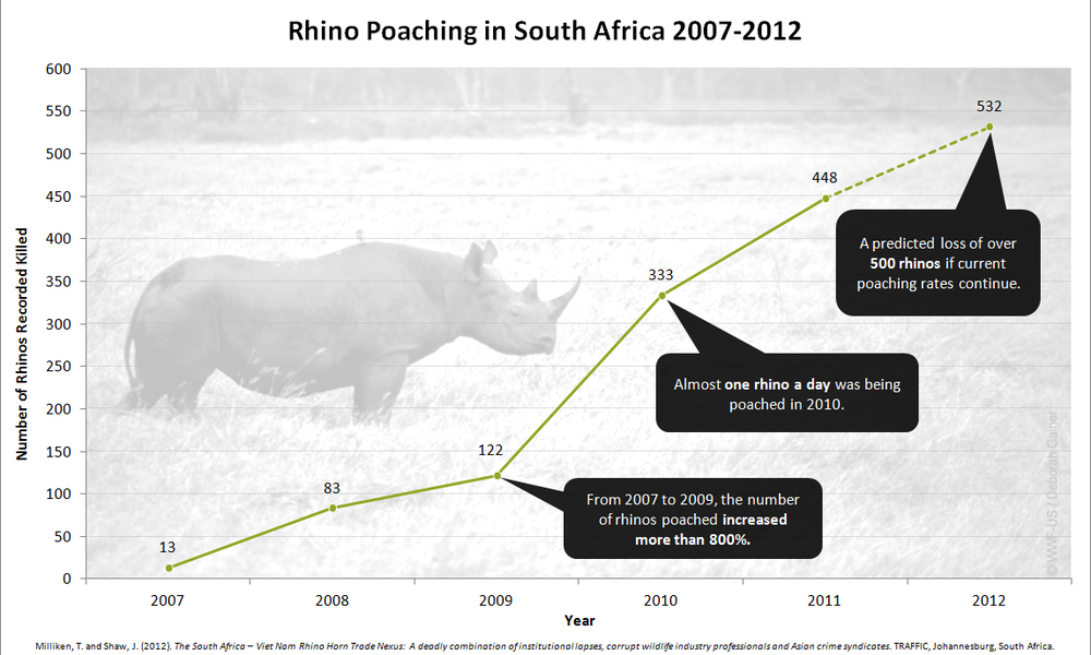 Rhino poaching graph