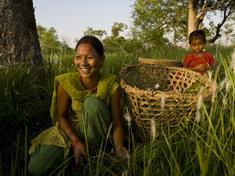 Gpn237779 women nepal