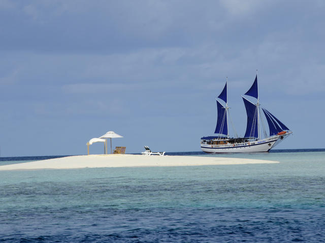 Maldives_Siren_new