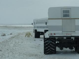 Polar_Rover_travel_blog