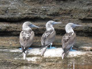 Galapagos Taught Me travel blog