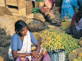 India_Food_Market_Travel