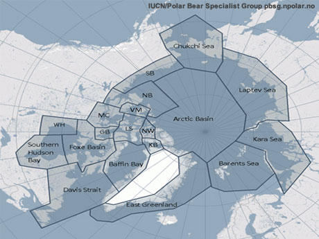 Map of Polar Bear Populations
