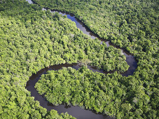 Aerial shot of the Amazon with a winding river, Loreto region, Peru.