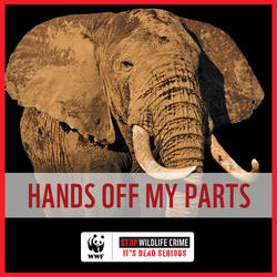 Hands Off My Parts (Elephant)