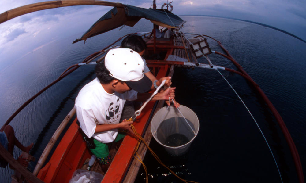 WWF-Philippines' biologist taking plancton samples