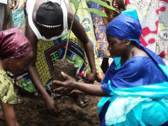 Women in DRC working on reforestation project