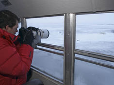 Photographing polar bears from the tundra buggy