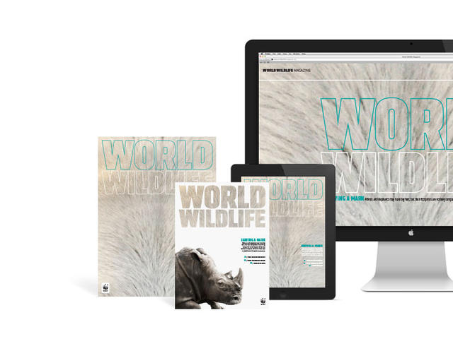 WWF Magazine - Print and digital