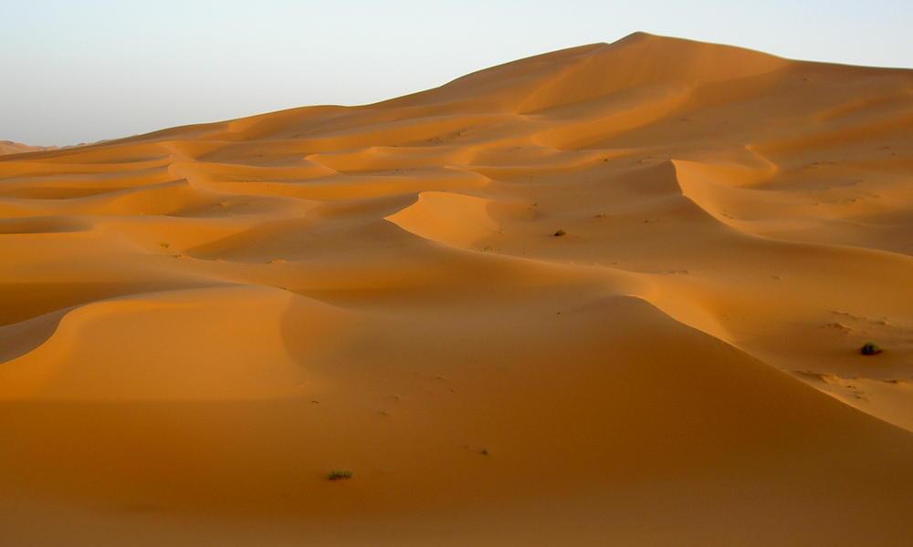 Sahara_Desert_Morocco_Matt_Erke.jpg