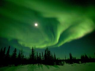 Northern Lights Churchill TRAVEL ONLY