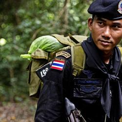 Ranger_299897_back-a-ranger