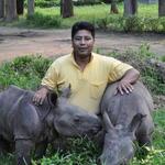 ranger with rhino calves