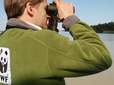WWF staff with binoculars