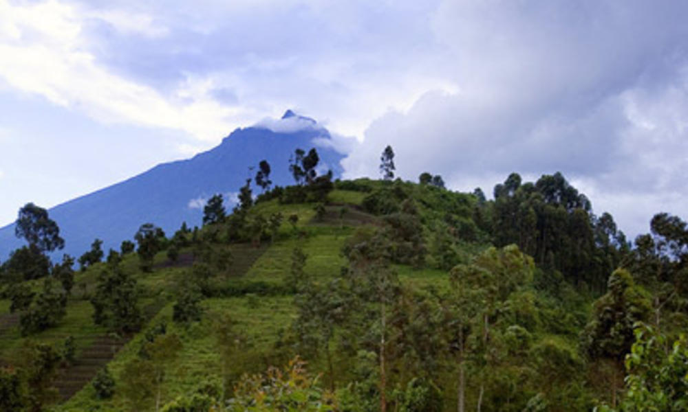 virunga landscape
