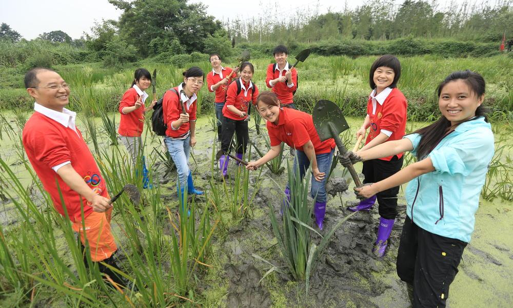 Jinyan wetlands