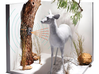 Display demonstrating how a camera trap works