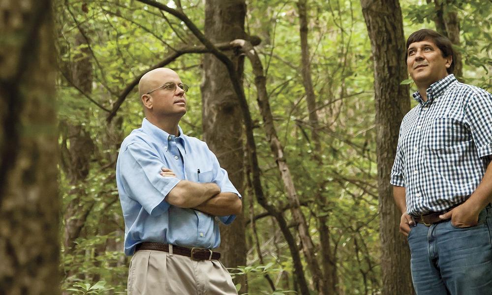 bob john in forest