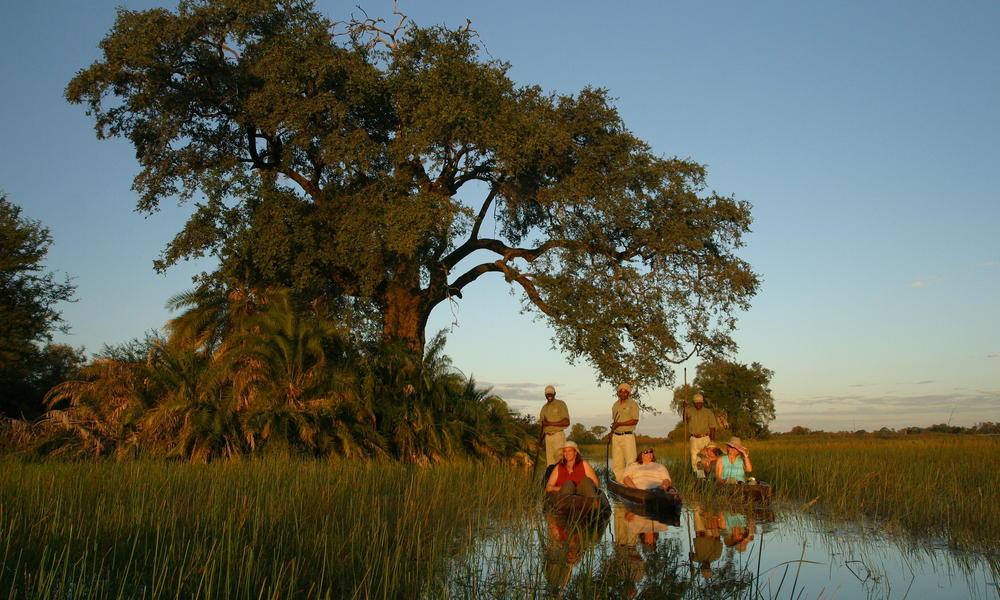 botswana safaris tours wwf