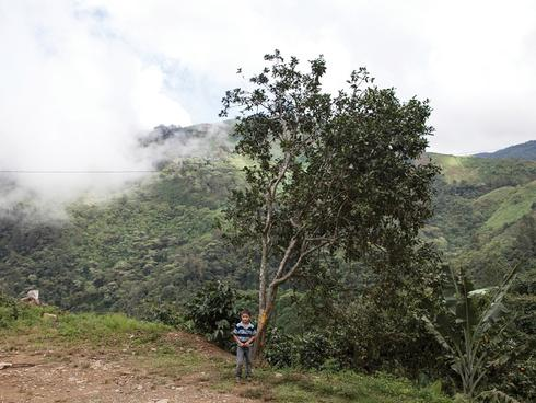 A boy from one of the farming communities in the Sierra del Merendón stands near a roadside.