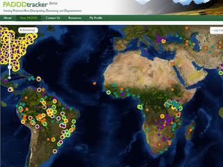 PADDD tracker image