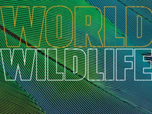 Spring 2014 WWF magazine cover