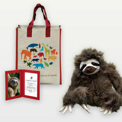 Three-toed-sloth-adoption_03.12.2014_help