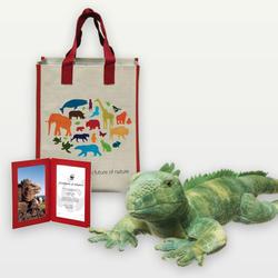 Iguana-adoption_03.12.2014_help