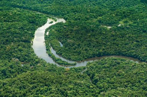 The Amazon and its tributaries 4d6618535bf0d