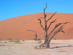 Desert 07182012 hi 115202