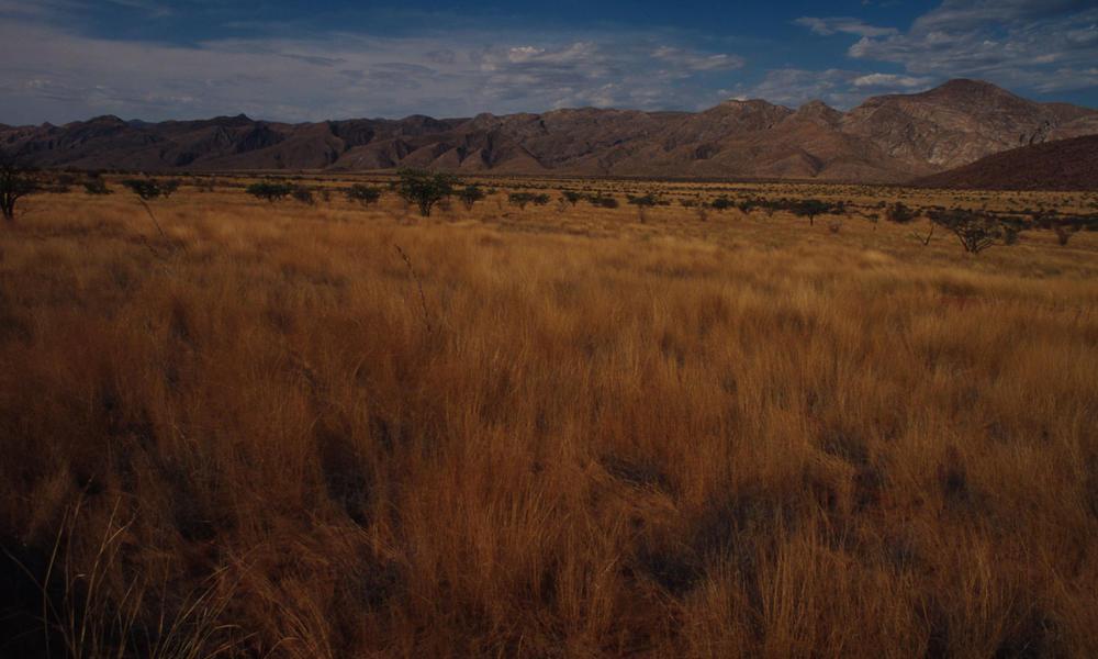 Marianfuss Valley Kunene Province Namibia