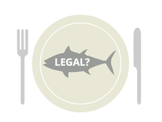 Fish on plate 06.18.2014 illegal fishing infographic
