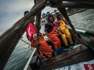Fishermen finishing morning work