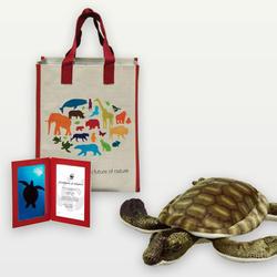 Adopt a Marine Turtle