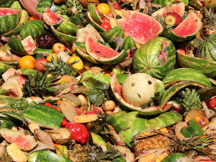 Pictures of food waste