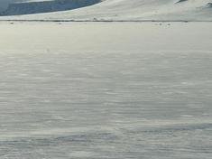 Polar region 07182012 xl 205925