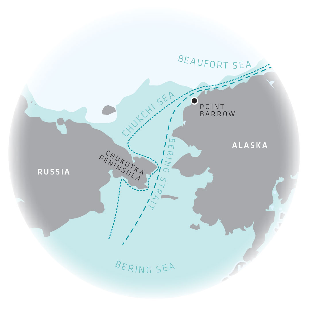 Inforgraphic map of bowhead whale migration patterns in the Chukchi Sea and Bering Strait