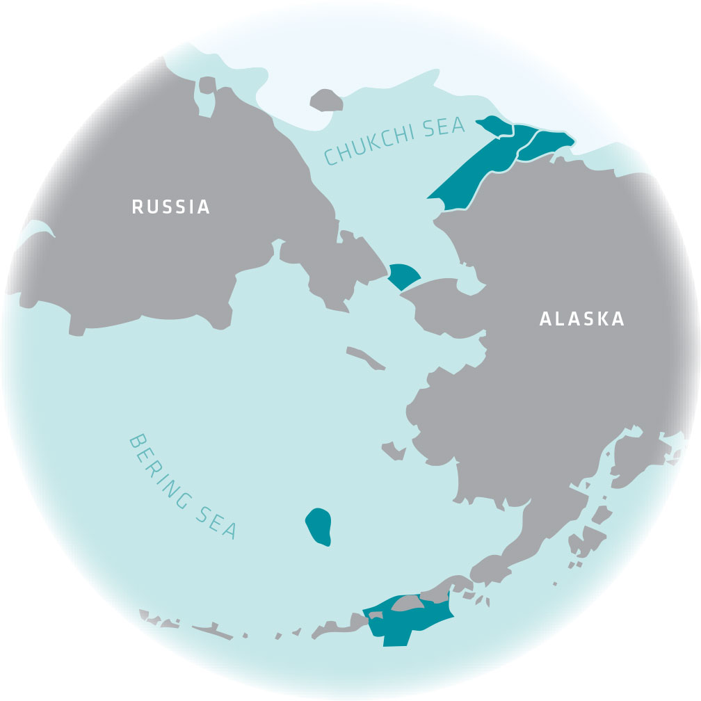 infographic map of Bering and Chukchi Seas that surround the coasts of Russia and Alaska.