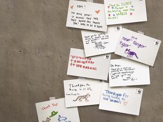 postcards to rangers