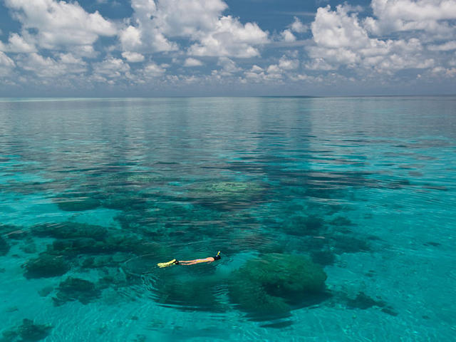 snorkeling in the pristine waters of Tubbataha Reefs Natural Park, Palawan, Philippines