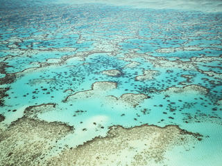 Great Barrier Reef 337114 Australia story