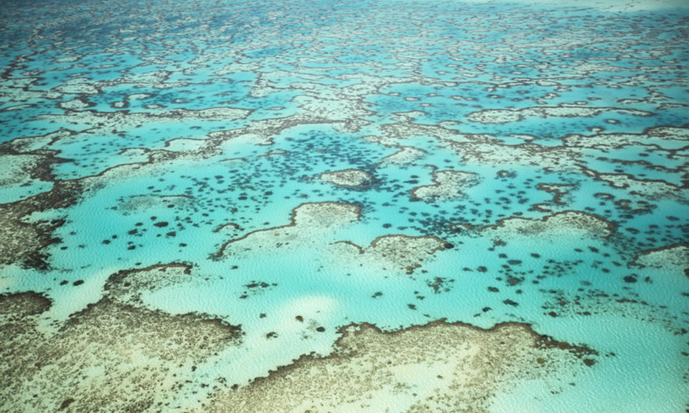 Great Barrier Reef 337114 Australia story