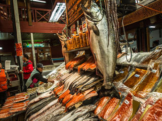 Salmon for sale in Chile