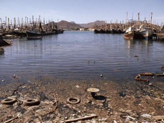 The most heavily polluted bay in the Gulf of California It has a large shrimping fleet and processing factories Guaymas, Sonora Gulf of California, Mexico