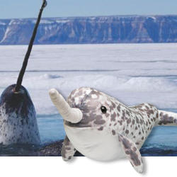Narwhal-adoption