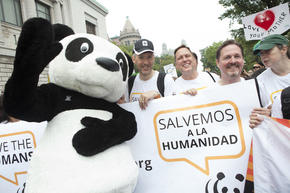 David Nesbum (WWF-UK), Terry Macko and Dave McCauley (WWF-US) participate in the People's Climate March in New York City on Sunday, September 21, 2014