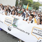 Supporters at the People's Climate March in New York City on Sunday, September 21, 2014.